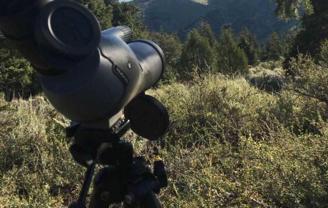 Vortex Razor HD 11-33X50 Spotting Scope Review